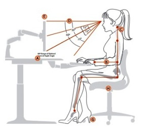 Ideal Seated Position